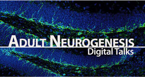 Adult Neurogenesis Digital Talks
